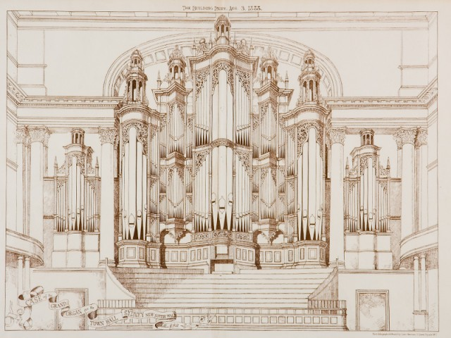 Organ Drawing